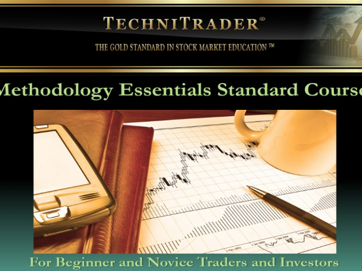 TechniTrader Stock Market DVD Course for Beginners